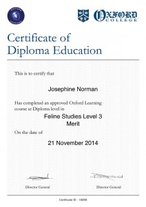 Certificate_18264-460_2014-11-21liten